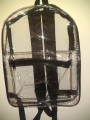 SEE Through Backpack for Work or Play